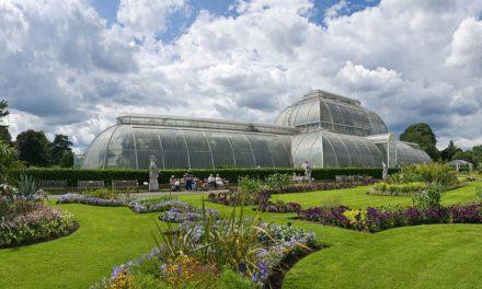 Découvrez les trois plus beaux jardins botaniques de la planète !