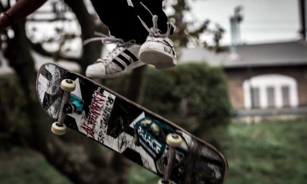 Le skateboard, le longboard et le cruiser