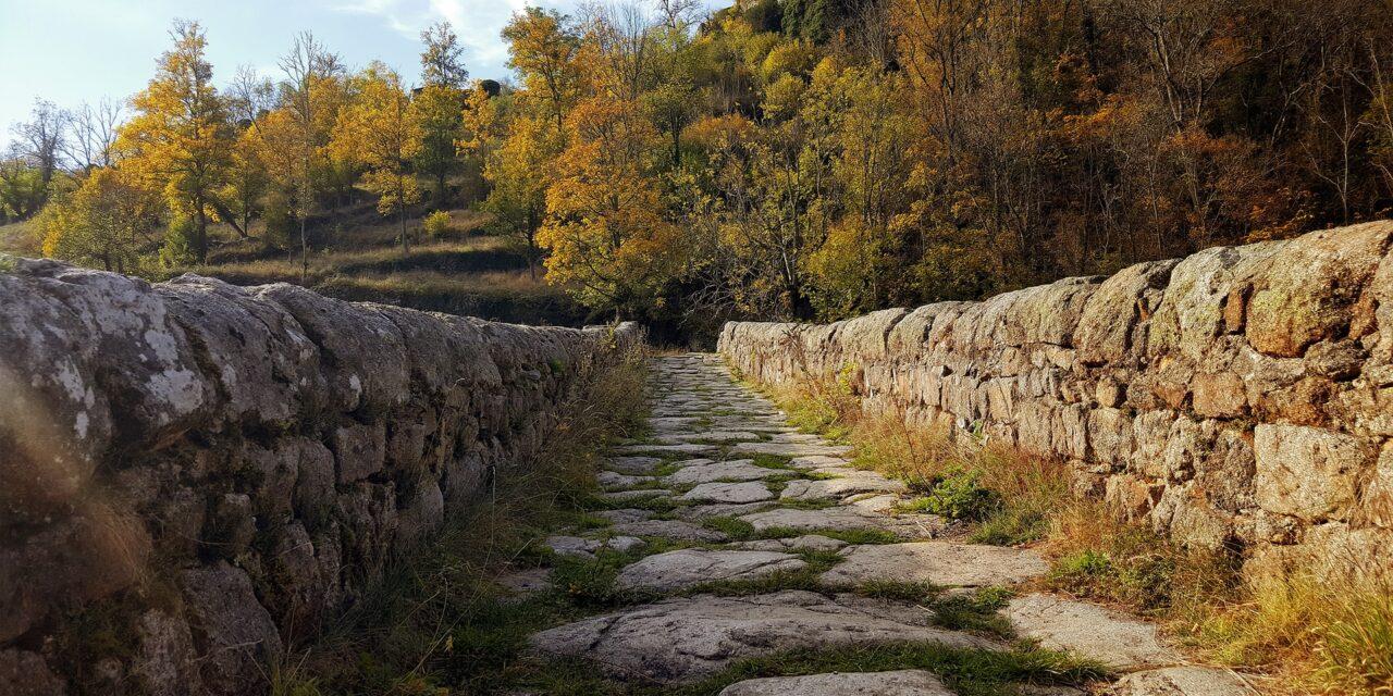 Randonnée : quelles idées de sorties en plein air dans les monts du Sancy ?